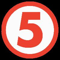 TV5 Network Inc.
